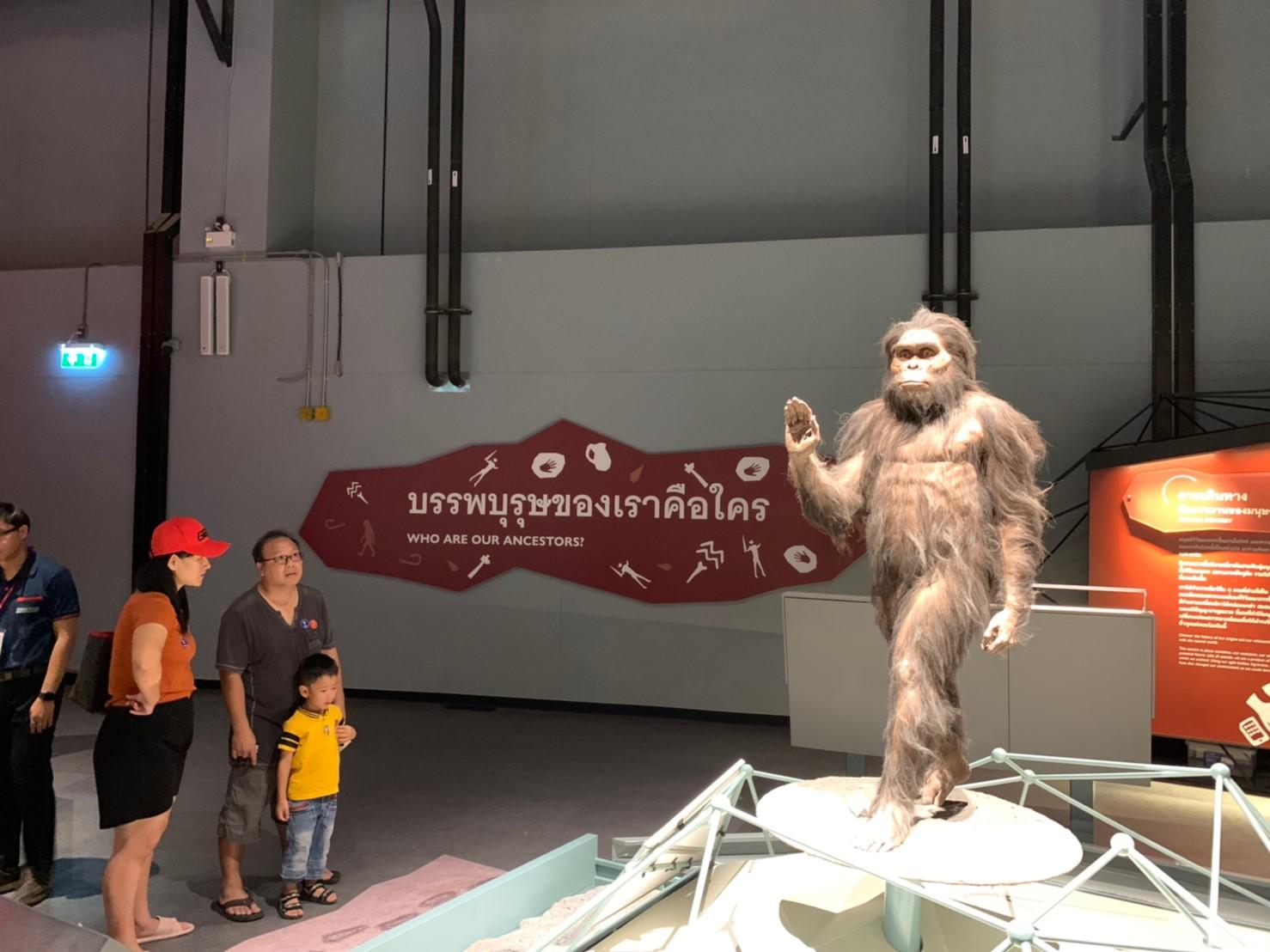 วิวัฒนาการมนุษย์ พิพิธภัณฑ์พระราม9