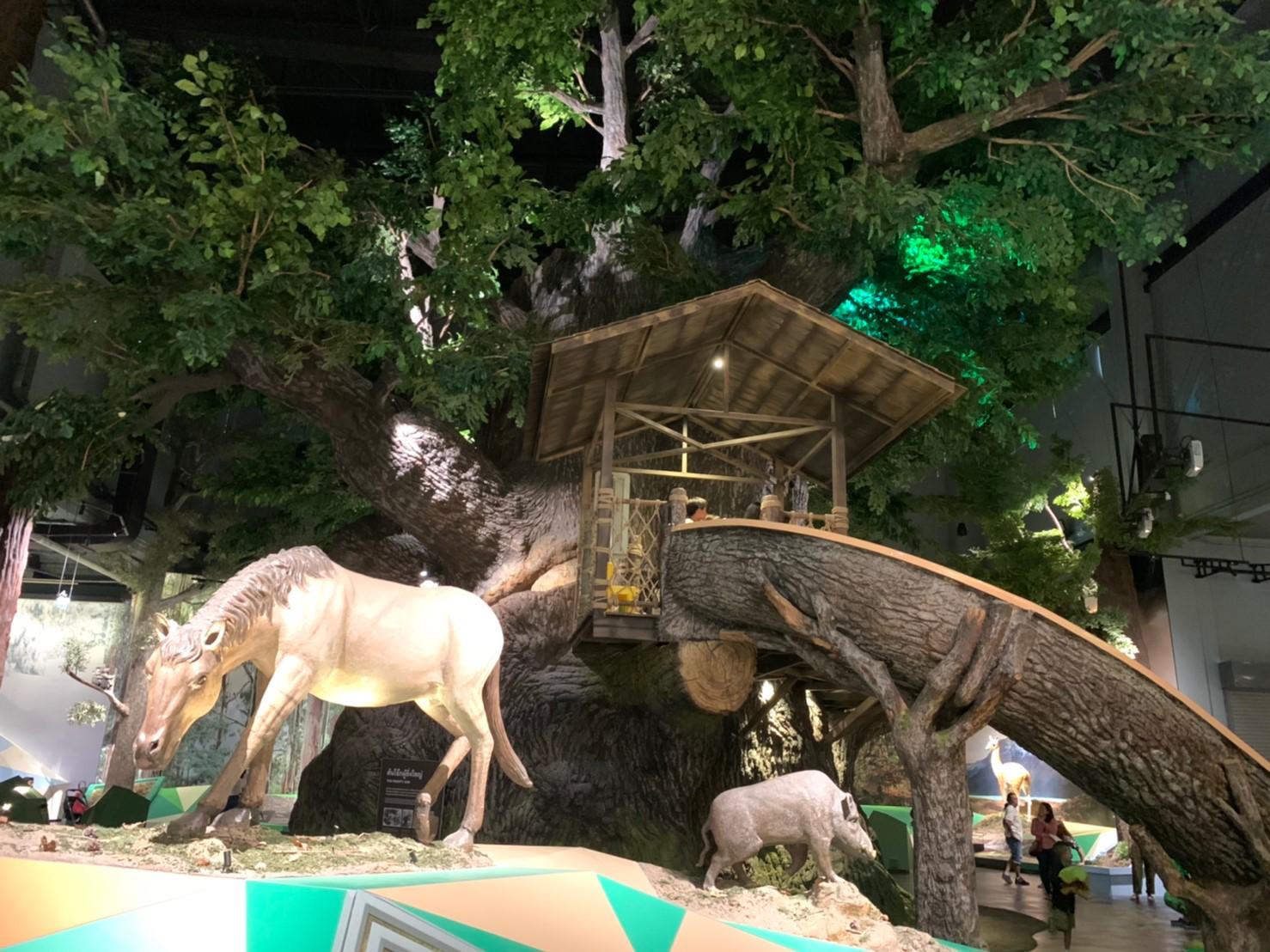 พิพิธภัณฑ์พระราม9