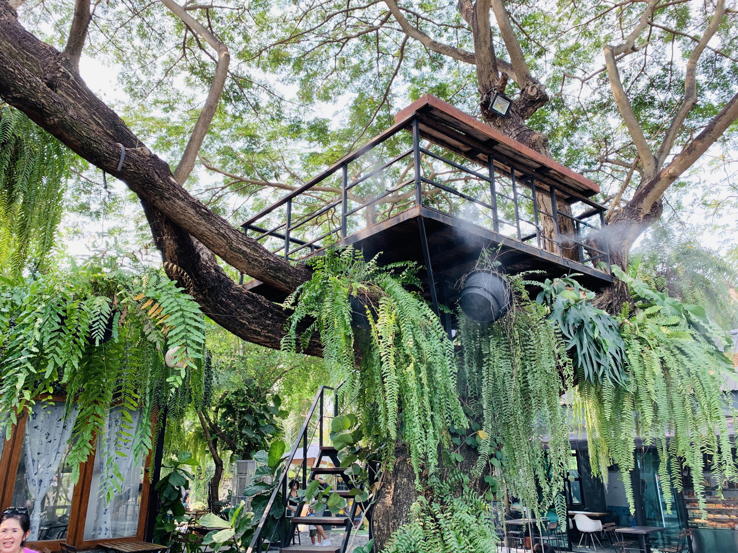 บ้าน ๑,๐๐๐ไม้ Cafe & Farm